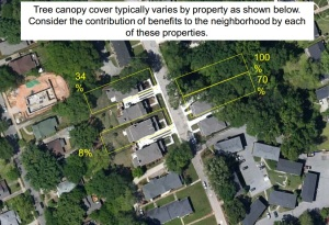 An example of sporadic tree canopy cover in the city of Decatur. Source: City of Decatur, Ga.